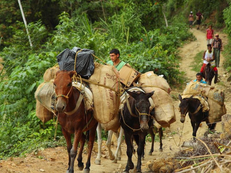Beladene Pferde auf unbefestigten Straßen in Kolumbien